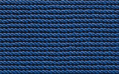301425 - viola blue