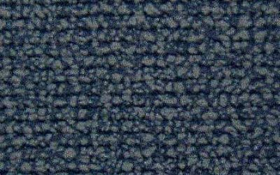 301431 - blue carpet print