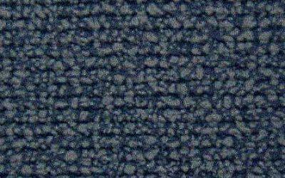 301431 - blue carpet print