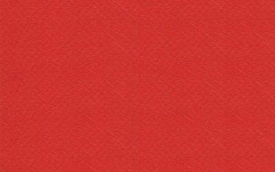 495981 - Orange