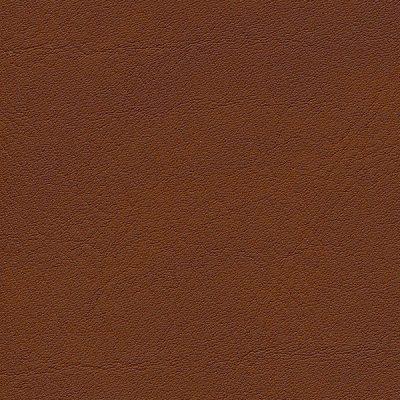 HAI – F6410706 inka