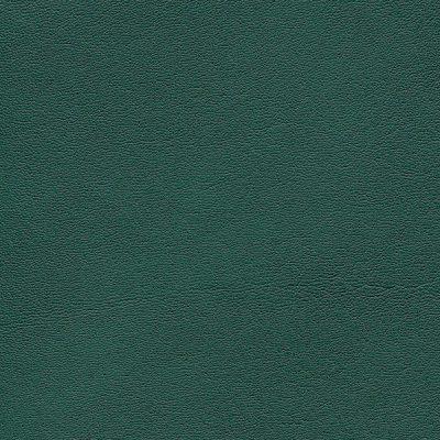 HAI – F6410716 tundra
