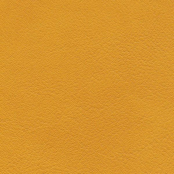 HAI – F6411060 mango