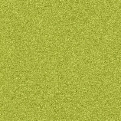 HAI – F6411172 limone