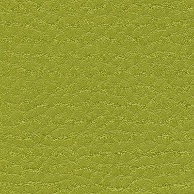 HAI – F6461657 limone