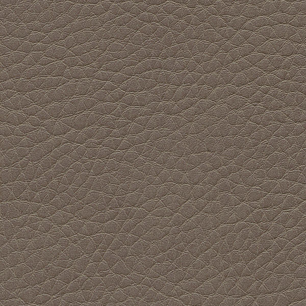 HAI – F6461658 fango