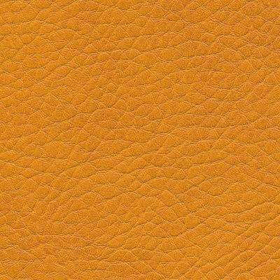 HAI – F6461666 mango