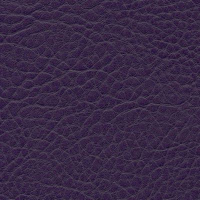 HAI – F6461736 lila